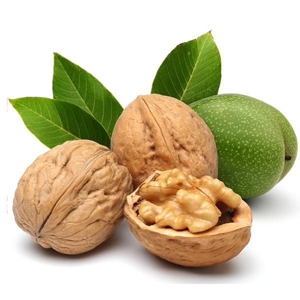 Vlašský ořech – nový bojovník proti rakovině tlustého střeva?
